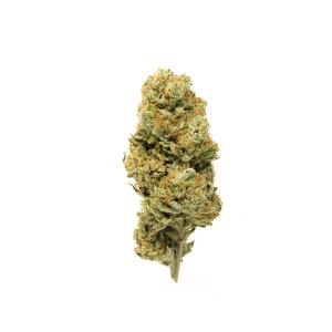 Biscotti CBD Flower