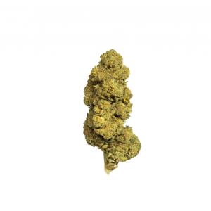 Lemon Sorbet CBD Flower